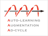 AUTO-LEARNING AUGMENTATION AD-CYCLE